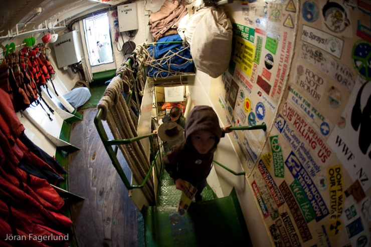 Rainbow Warior är en 50-år gammal fiskebåt som köptes 1988 efter att franska agenter sprängde den första Rainbow Warior 1985.