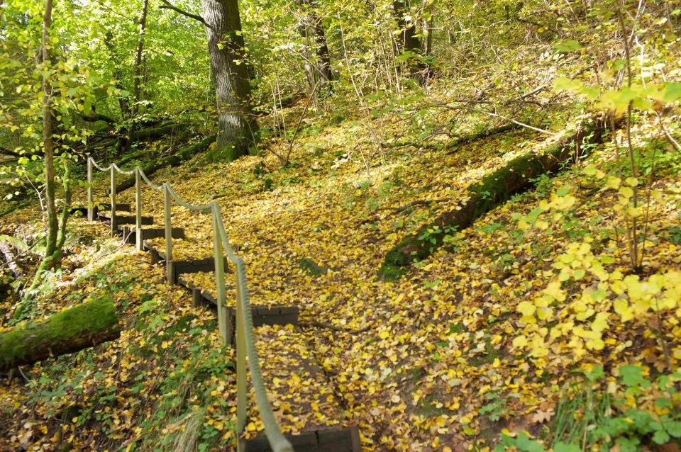 Lärjeåns dalgång har många unika naturvärden både biologiskt och för rekreation.