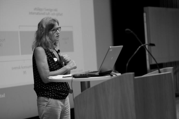 Ann-Marie Ramnerö, avdelningschef på miljöförvaltningen.
