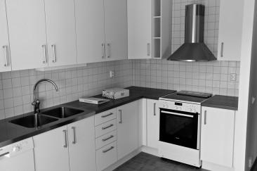 Köket i kombohuset.