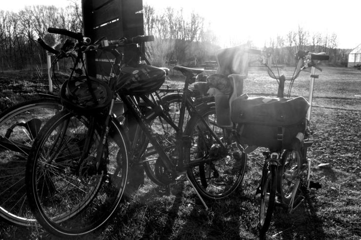 Perfekt cykelväder.