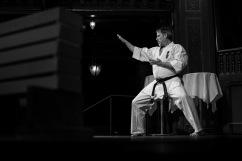 Fredrik Gundmark, Kyokushin karate.